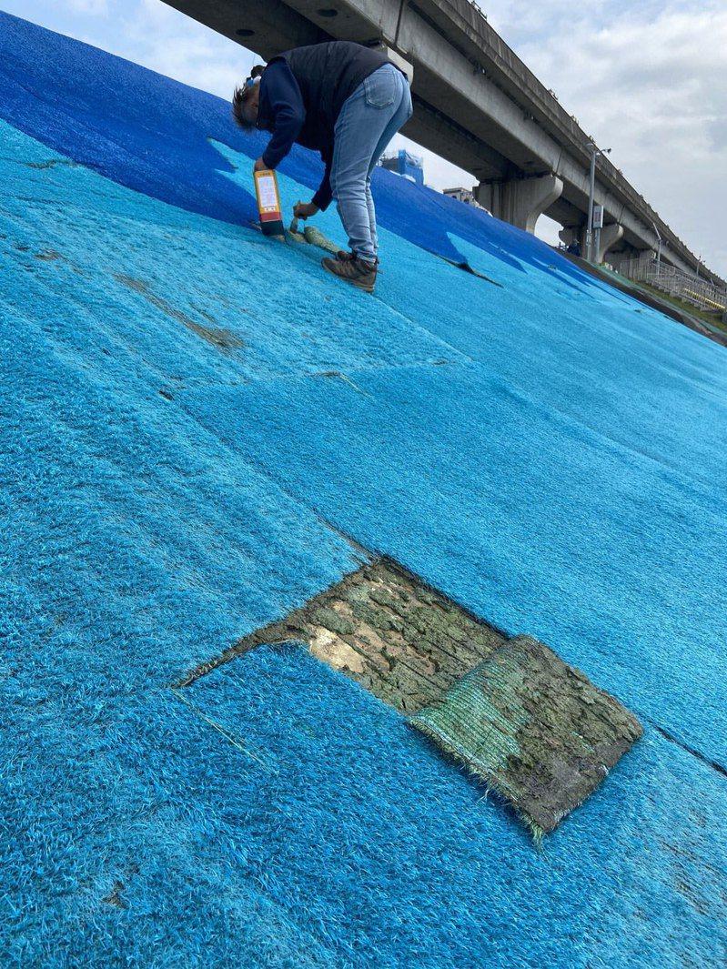 新北市高灘處對人工草皮修不勝修,決定要一次性整修換新,預計將封閉熊猴森滑草場1個月。圖/新北市高灘處提供