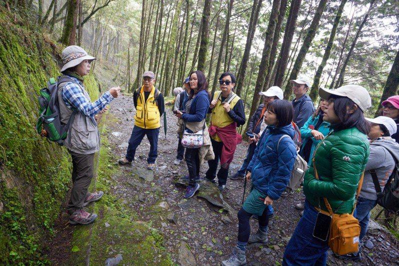 跟隨老師的腳步,可以聽到許多林間知識。