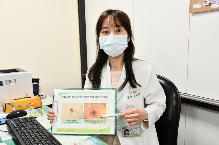 台中醫院皮膚科醫師吳家華說,恙蟲病傳播者主要是恙蟎,體型非常小,只有0.02-0...