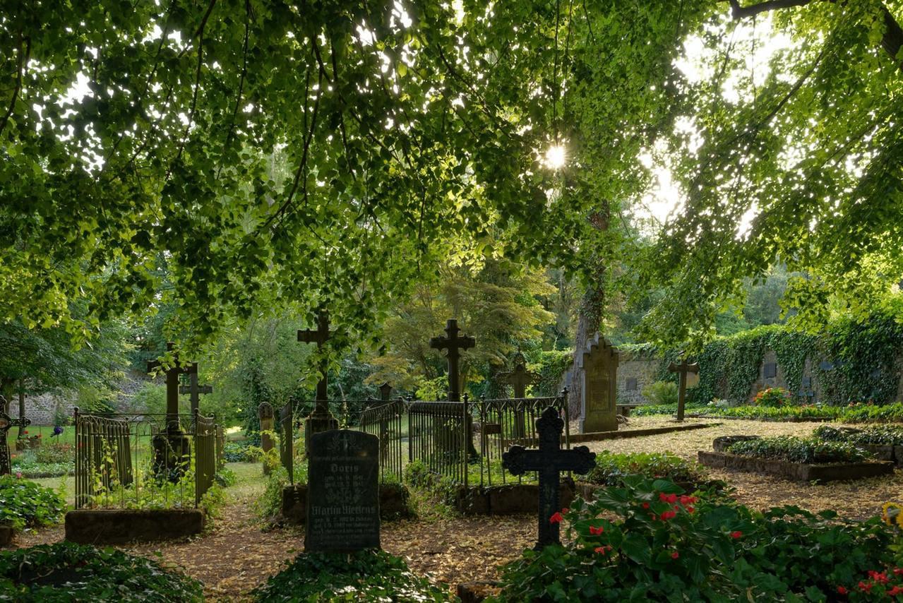 清明節是祭祖的日子,又稱民族掃墓節。 圖/unsplash