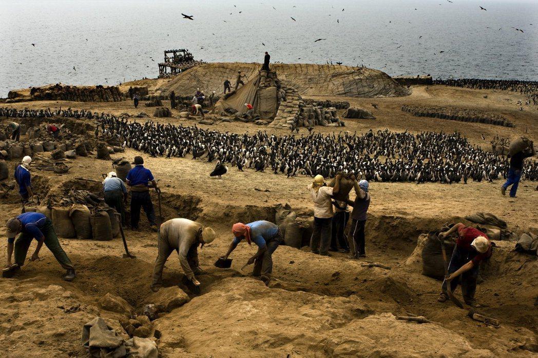 19世紀智利曾經靠著開挖領土中大量的鳥糞島(有些島嶼上的鳥糞甚至堆成10公尺厚)...
