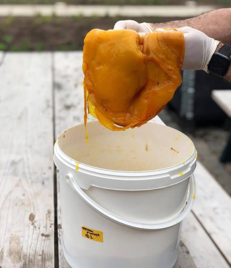 4度獲得世界最佳餐廳的NOMA,推廣康普茶的料理可塑性,圖為NOMA在2019年...