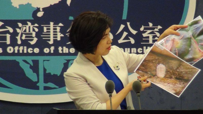 中國大陸國台辦發言人朱鳳蓮(圖)31日在例行記者會拿出通報函與放大的蟲體照片,表示去年向台灣通報鳳梨不合格情況確定是28件。圖/中央社