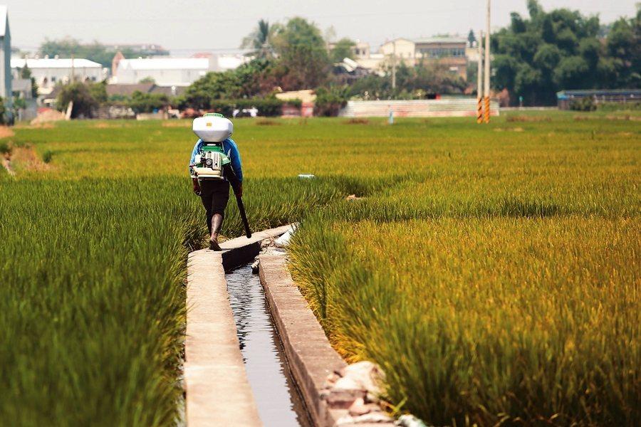 台灣農田水利發展史,也是一部台灣的土地開發史,水圳灌溉網絡與人文、地理互相影響。  圖/聯合報系資料照