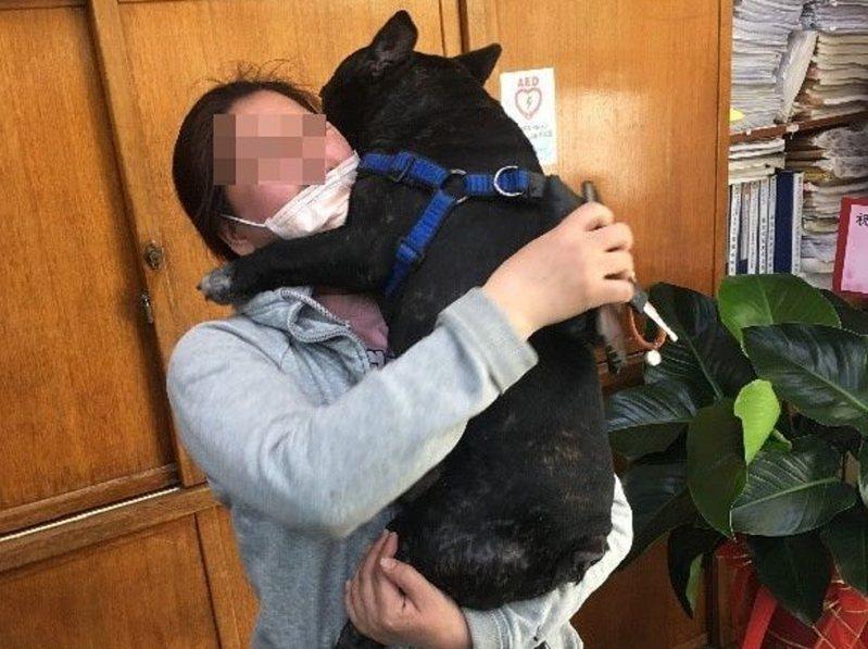 汐止分局長安派出所警員調閱監視器尋獲失蹤的法國鬥牛犬Blackey,女飼主激動到哭了出來。 圖/觀天下有線電視提供