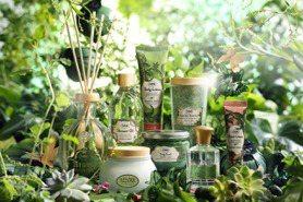 以抹茶味增添生活儀式感!SABON綠意叢林系列恬靜放鬆