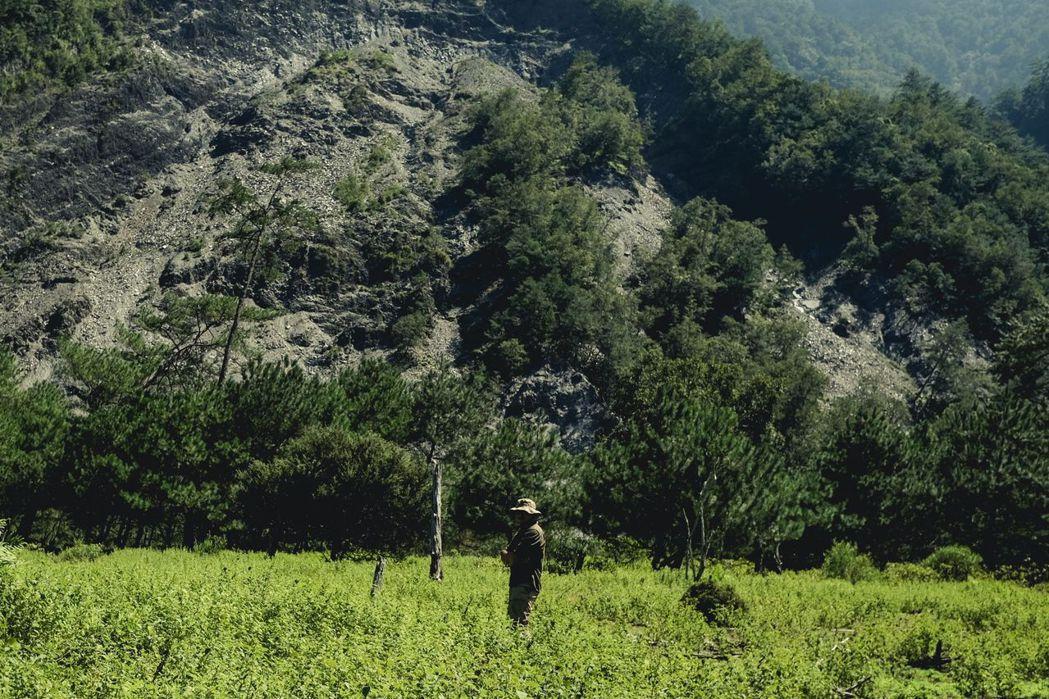 第三集製作團隊跟隨郭熊深入八通關古道,窺看動物生活的痕跡。 圖/公視提供
