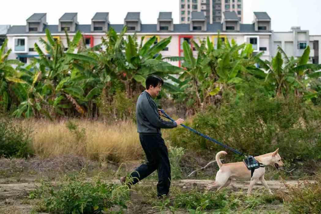 善化最能看到台南快速開發下的新舊衝突。傳統農村小鎮外仍有雜草空地,但又能看到整片...