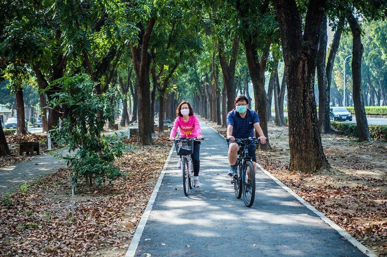 騎進世賢路桃花心木林道,彷彿從都市進入森林。圖/嘉義市政府提供