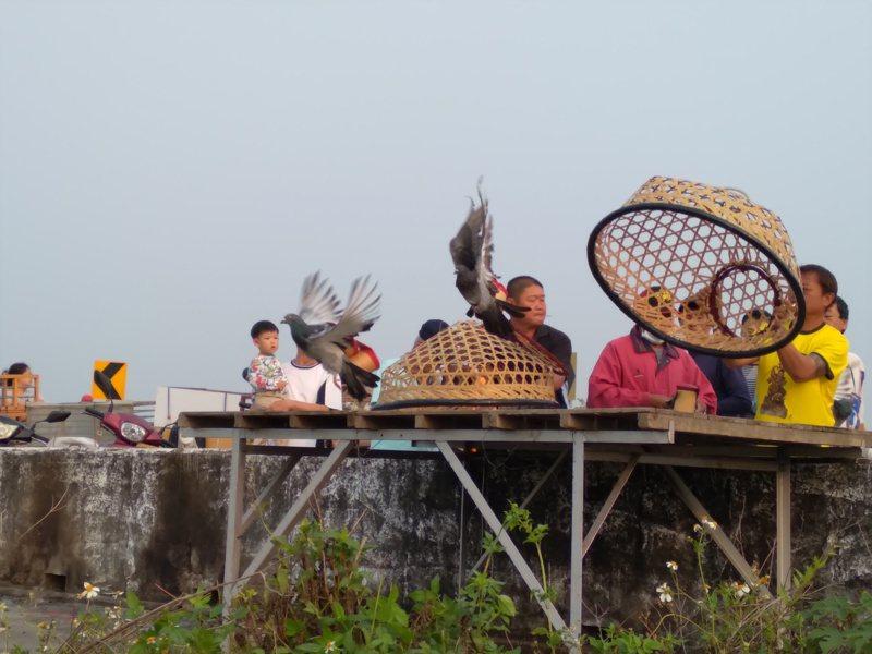台南鹽水、學甲、新營等地區賽鴿笭活動,正陸續展開對抗賽,賽程將持續到5月。圖/台南市政府文化局提供