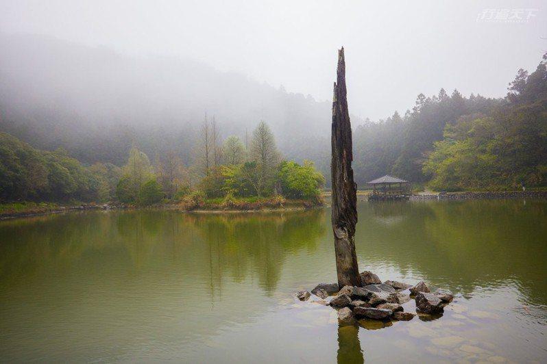身處高海拔的飄渺明池湖,湖上天鵝與魚悠遊。