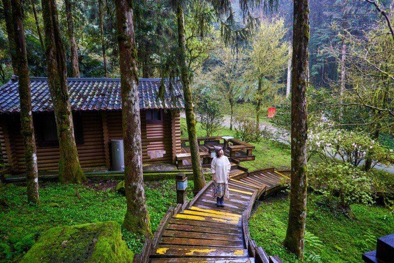 來這裡,可以入住明池山莊森林間的小木屋享受夜晚寧靜。