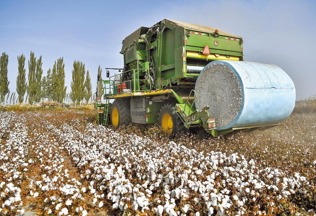 吳啟訥認為,這次新疆棉遭遇的損失不是一時之間就能彌補回來的。中新社資料照片