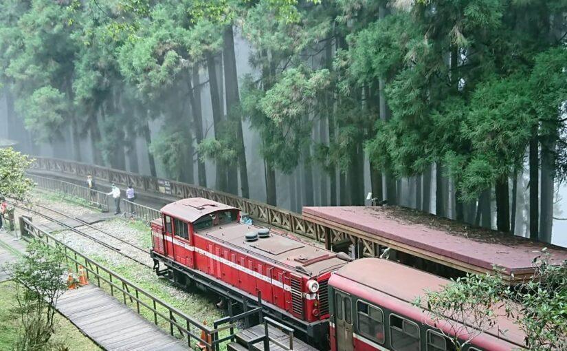 現在的阿里山小火車已經是大家來到阿里山必須搭乘的大眾運輸工具之一 圖/IG@ze...