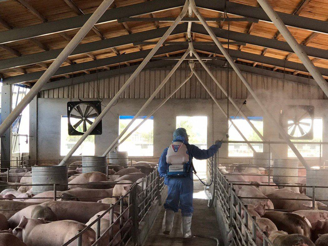 高雄市目前有448場養豬場,飼養總頭數約30萬頭豬隻,為杜絕非洲豬瘟疫情,市府加...