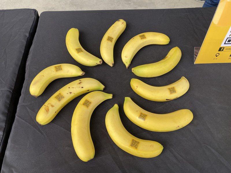 香蕉示意圖。記者劉星君/攝影