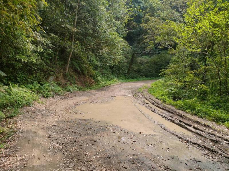 水田林道支線沿線路面崎嶇不平且常有積水濕滑問題,將實施道路施工改善。圖/新竹林管處提供