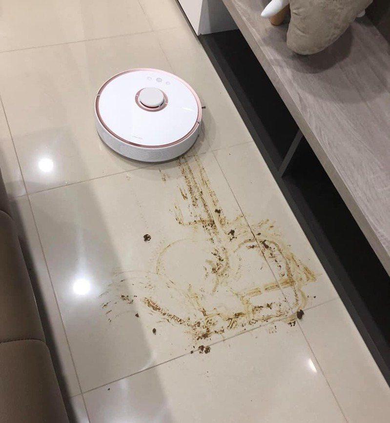 她開掃地機器人打掃,返家卻見地板遍布大便。圖擷自爆廢1公社