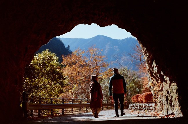 別有洞天的森林秘境,為旅客提供一場靜謐的芬多精森林浴。 圖/Ensen Maru...