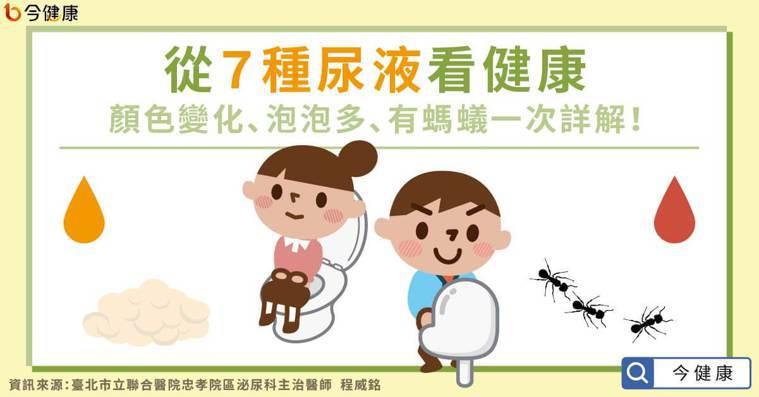 從7種尿液看健康,顏色變化、泡泡多、有螞蟻一次詳解!