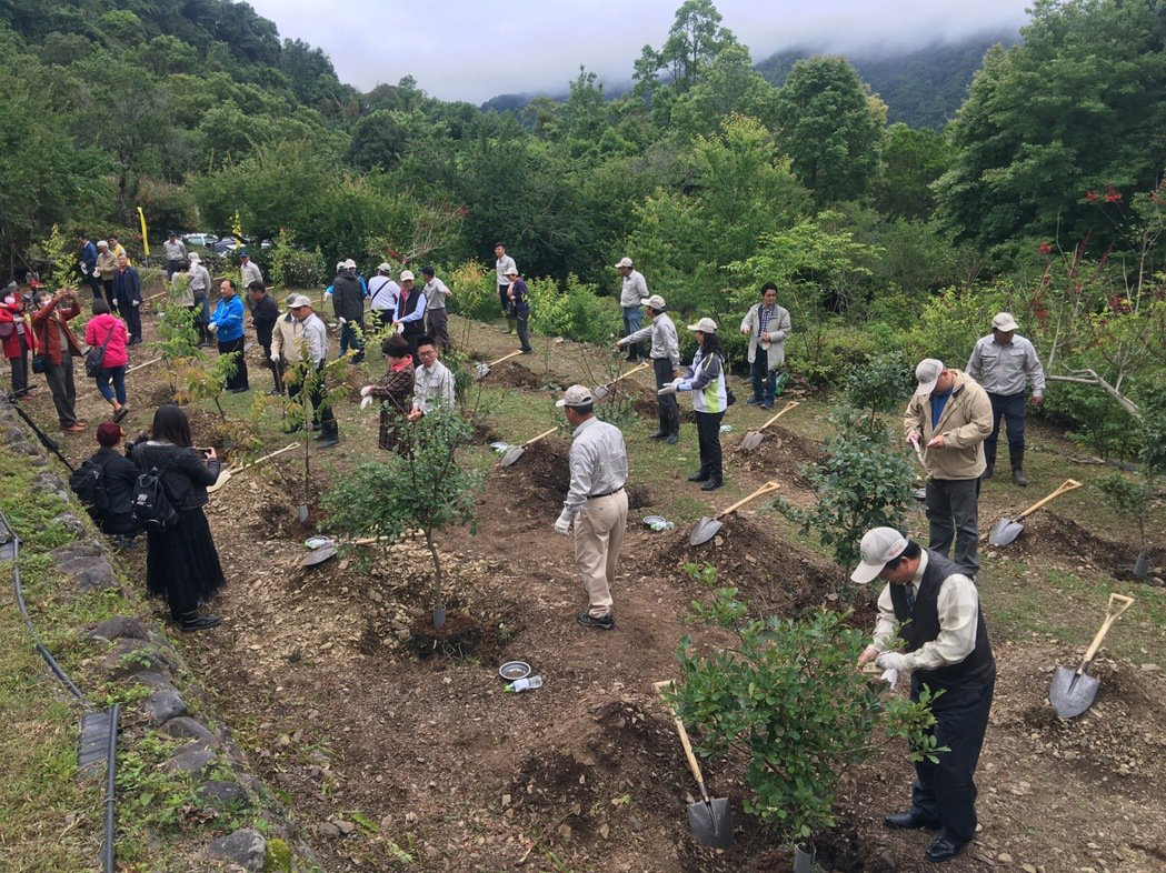 9日植樹活動種植120多顆以吉野櫻,流蘇樹及象牙木為主。 力麗/提供。