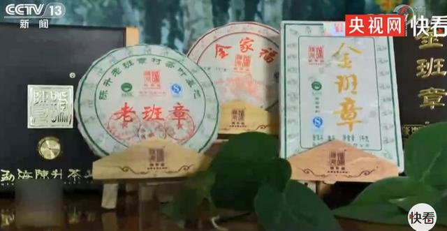 西雙版納有知名的普洱茶「老班章」,古樹茶尤其有名。圖源:央視網