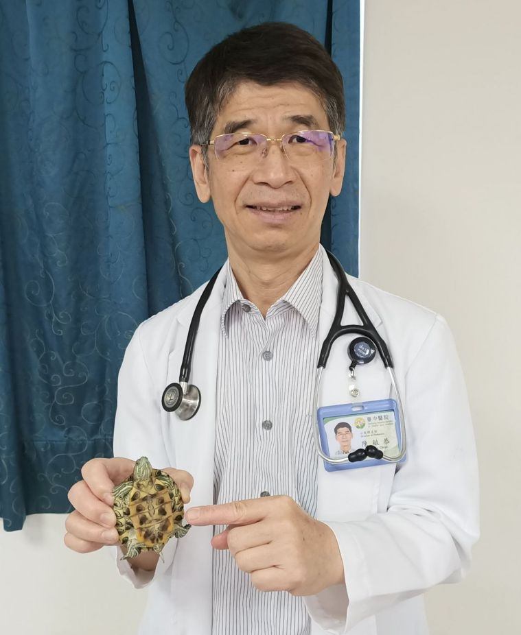 醫師陳敏恭說明,烏龜排泄物糞便帶有沙門氏菌,孩童若接觸烏龜或飼養環境後,不徹底洗...