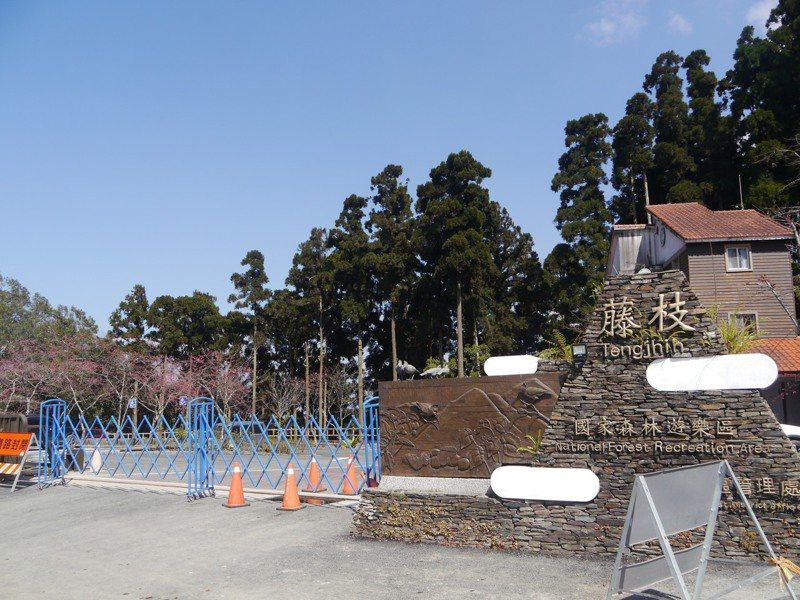 林務局今天在高雄市府鳳山行政中心正式宣布,藤枝森林遊樂區5月7日開園。本報資料照片