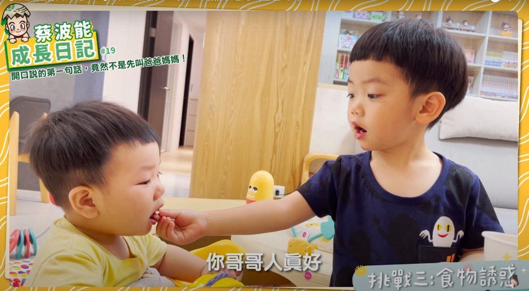蔡桃貴與蔡波能。圖/擷自YouTube