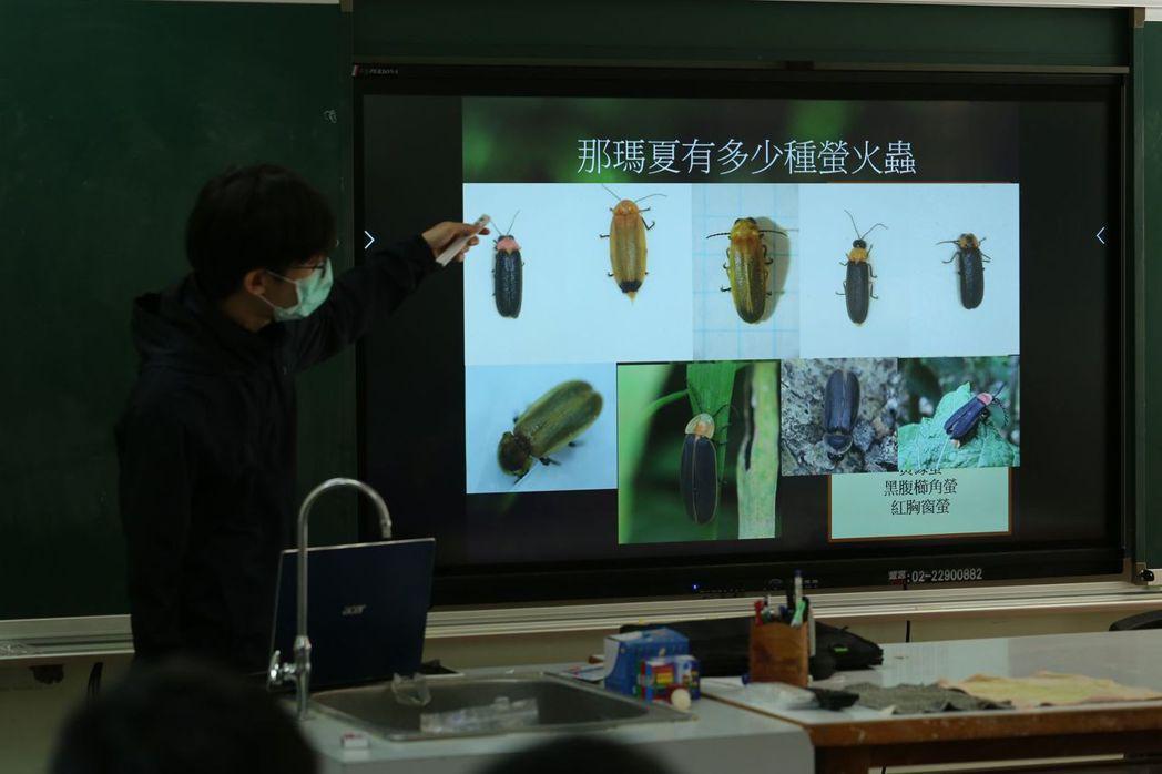 高醫大USR團隊教導那瑪夏學生認識那瑪夏螢火蟲種類。 高醫大/提供