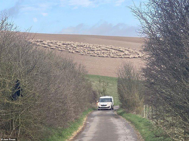 遠方的巨型綿羊圈與白色小客車形成強烈對比,網友們看了覺得心裡很不安,引發諸多討論。圖擷自每日郵報