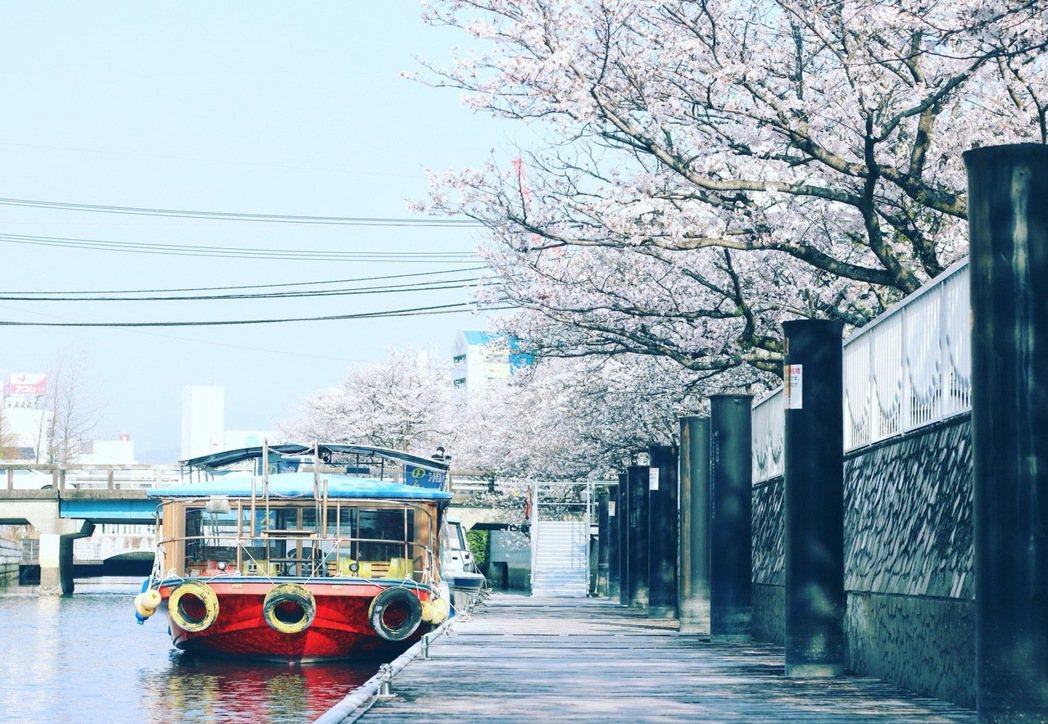 搭船遊崛川,愜意賞櫻。高知縣/提供
