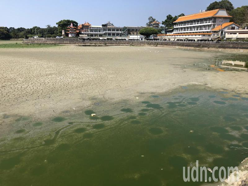 「百年不曾見底」名刹赤山龍湖巖周遭湖泊意外乾涸。記者周宗禎/攝影