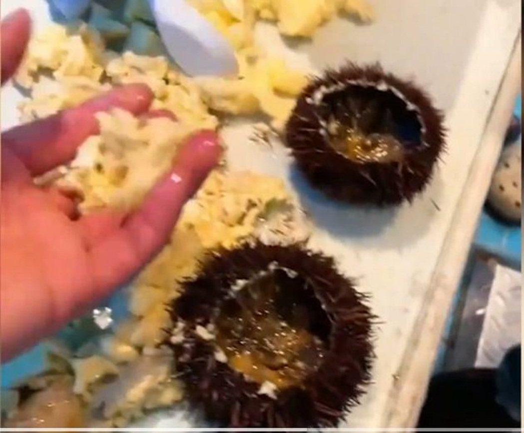 海膽蒸蛋沒有海膽,三亞遊客投訴反被威脅。影片截圖