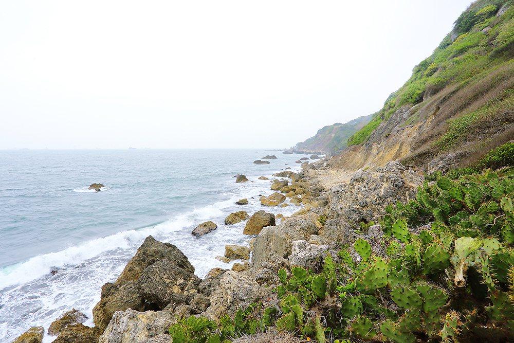 西子灣海岸線的自然風光迷人。 圖/Carter 攝影