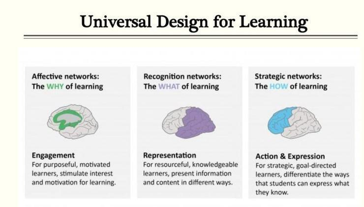 讀者認定知識的相異、內容的意義,這是用到了大腦的認知網路 圖/黃軒醫師資料照片