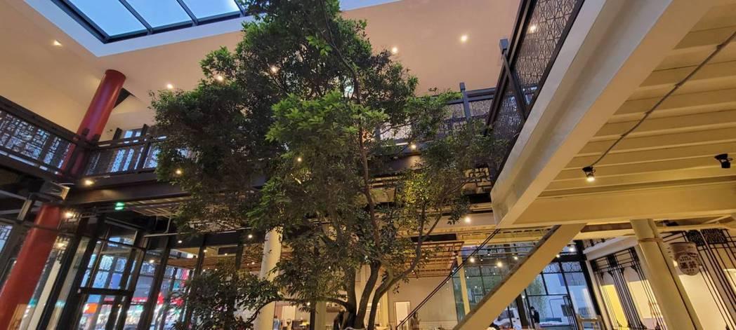 位於新埔捷運站的「消失製造所」外觀融合古典與現代,引發板橋在地人熱烈討論。(圖/...