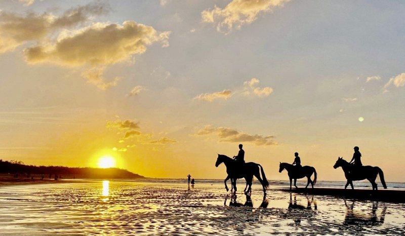 「初春.走馬看花」由專人導覽園區並騎乘馬匹於沙灘踏浪。 業者/提供