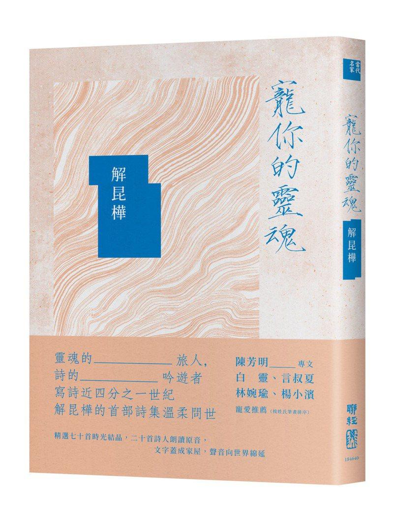 書名:《寵你的靈魂》 作者:解昆樺  出版社:聯經出版  出版時間:2021年04月15日