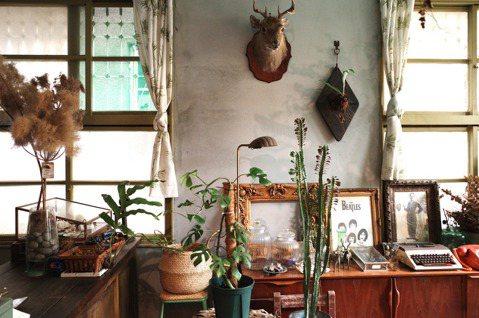 對Shadow來說,空間、植物與生活是一個整體,除了植物,店裡有他喜歡的乾燥花、...