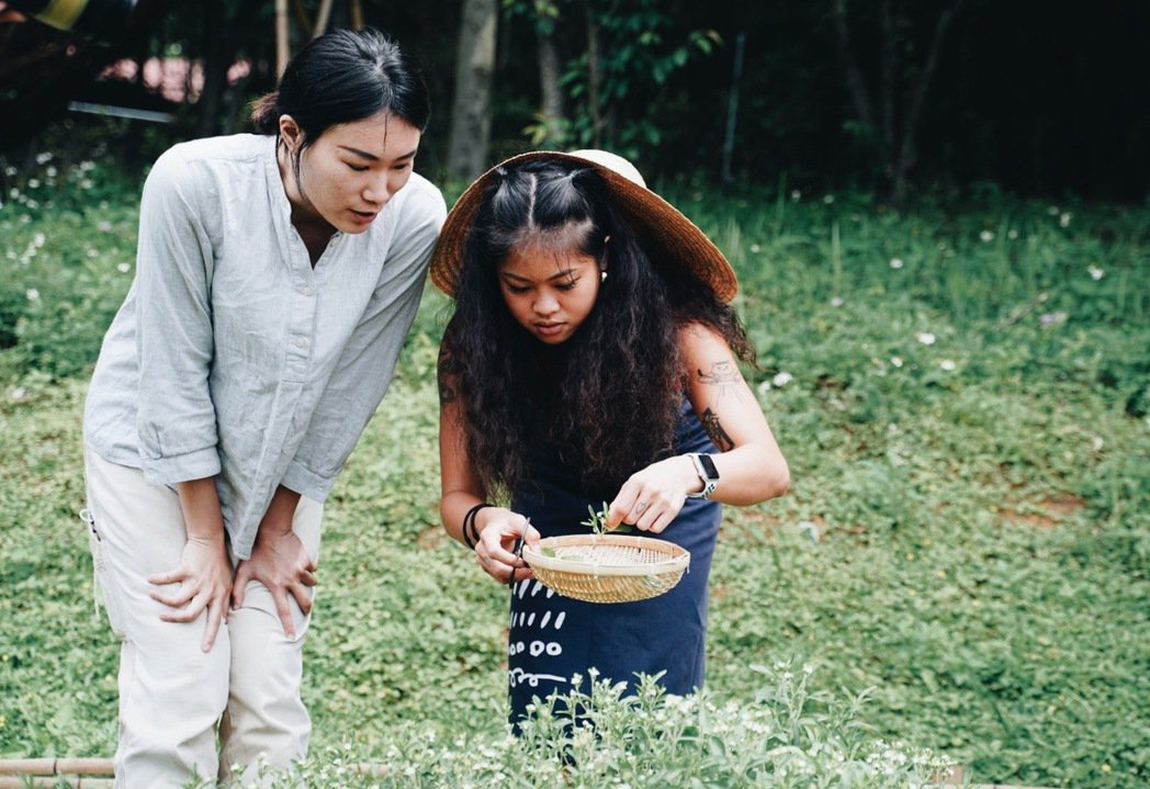 魔幻露營glamping活動中,將由勤美學植物達人帶領認識花草,開啟採摘體驗。 ...