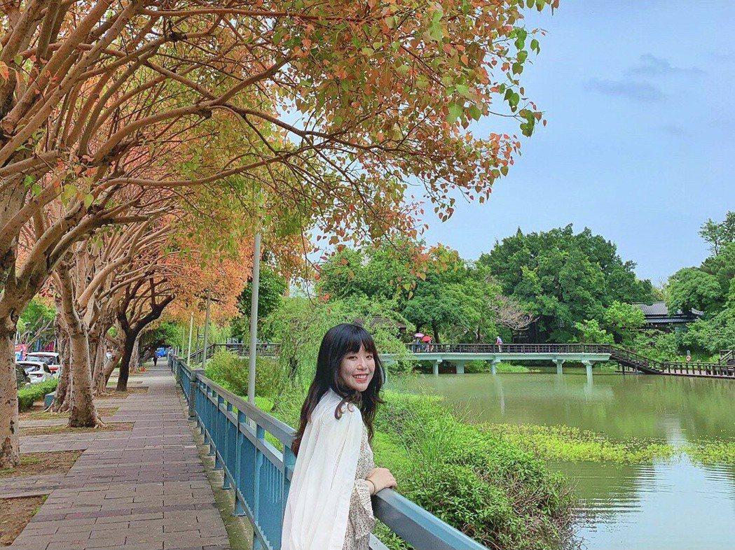 麗池公園不僅僅有櫻花季,每到5、6月,一旁的樹葉隨著季節轉換而變色,紅綠交錯形成...