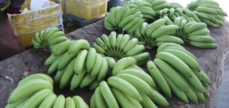 外銷日本的台灣香蕉3月份發生農藥百克敏超標,最近又檢出第滅寧0.02ppm,違反日方不得檢出規定。圖為香蕉示意圖。本報資料照片