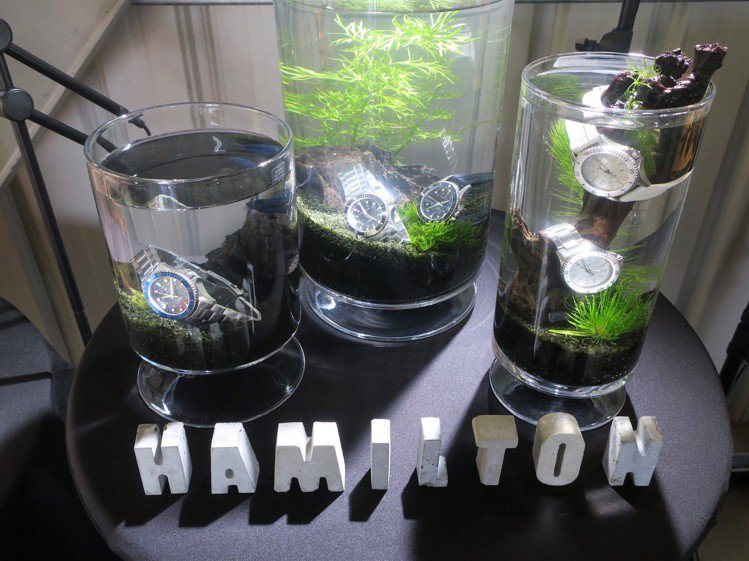 防水表能怎麼玩?Hamilton發表新品不忘把表款和小魚放進水中同悠遊。記者 /...