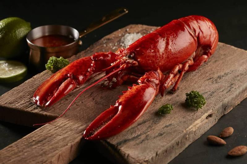 王品牛排推出「法式紅醬龍蝦」。圖/王品提供