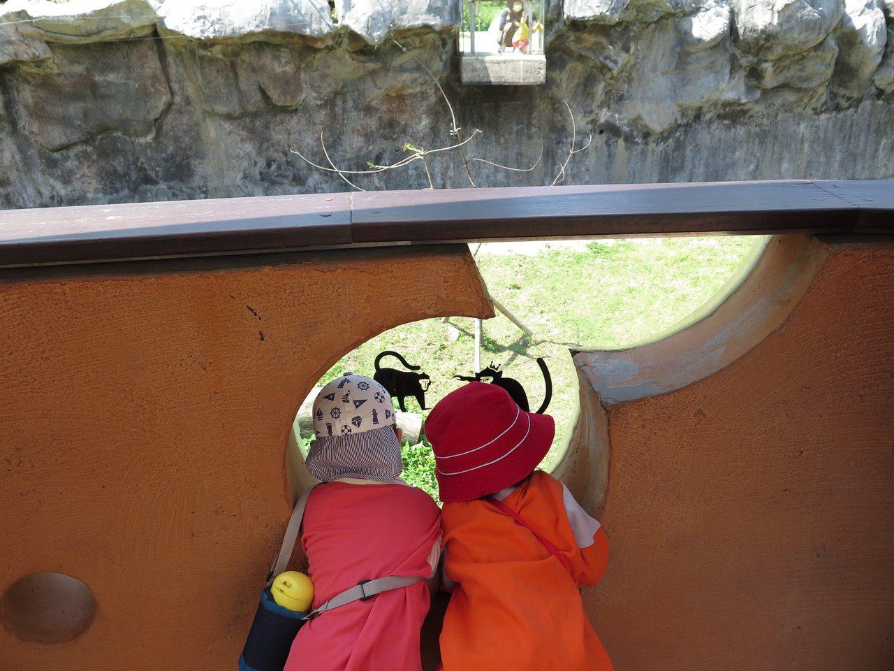 新竹市立動物園空間營造也考慮到小小孩,孩子透過玻璃,也能欣賞到動物。 圖/張裕珍...