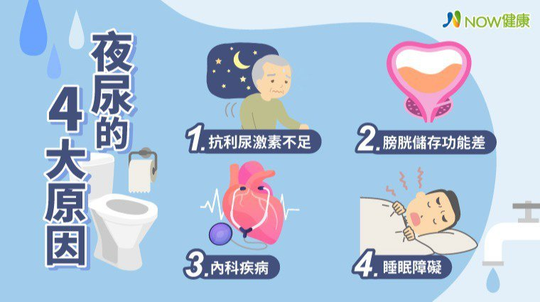▲台灣40歲以上成人的夜尿盛行率高達38.1%,盛行率隨著年齡增長而增加,但民眾...