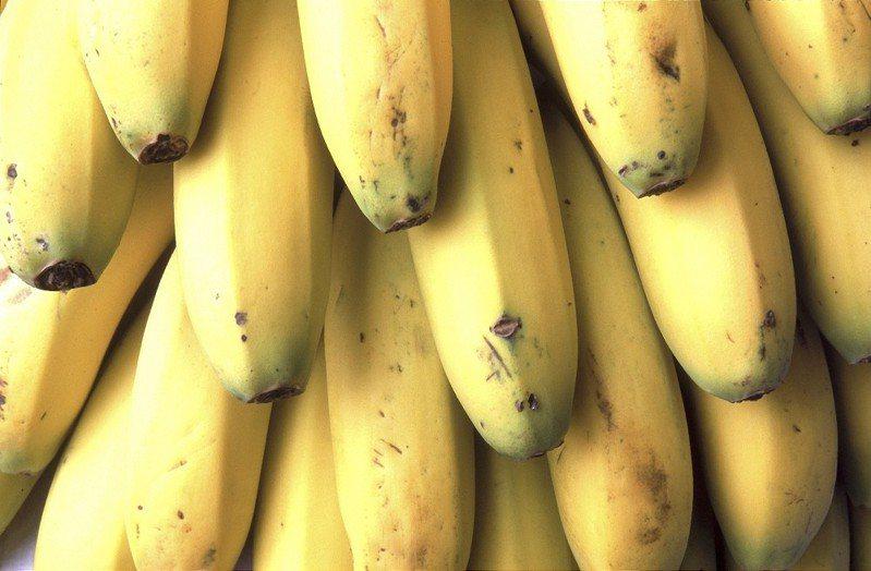 香蕉富含營養,卻不易保存,最佳食用期一過就容易發黑變爛。 示意圖/ingimage