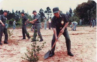 昔日金門的造林工作,主要是由官兵全權負責,不少金門人說,沒有他們就沒有現在「海上公園」的金門。圖/金門縣林務所提供