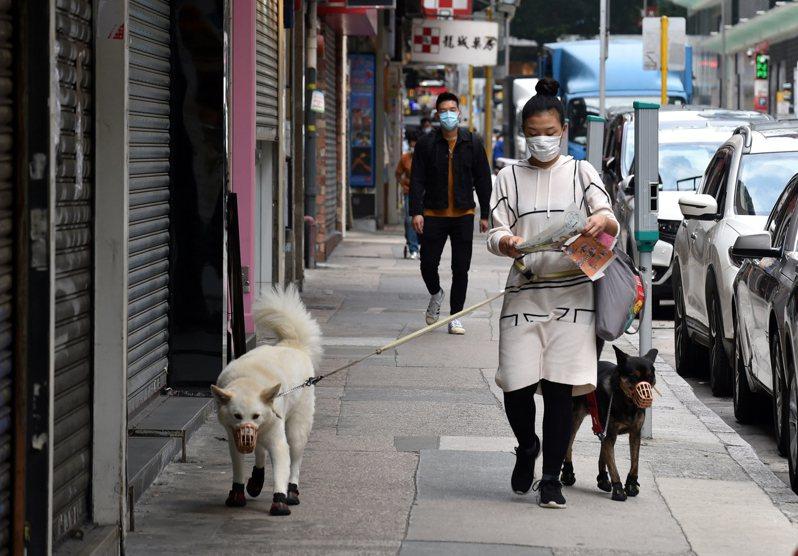 香港疫情再現反彈,今天新增18例2019冠狀病毒疾病(COVID-19)確診病例,其中首度發現本土病例帶有N501Y變種病毒,而且這名病患感染源頭不明。 新華社